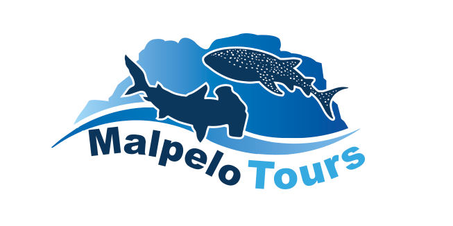 Malpelo Tours | Diving with Sharks